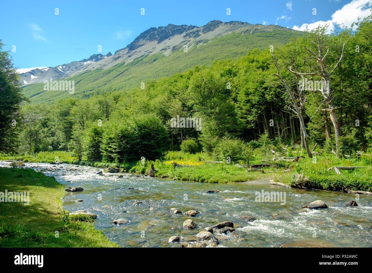 Río Chico streams through the Andorra Valley of Ushuaia in Tierra del Fuego. The river lies in the middle of a supreme nature scenery. Stock Photo