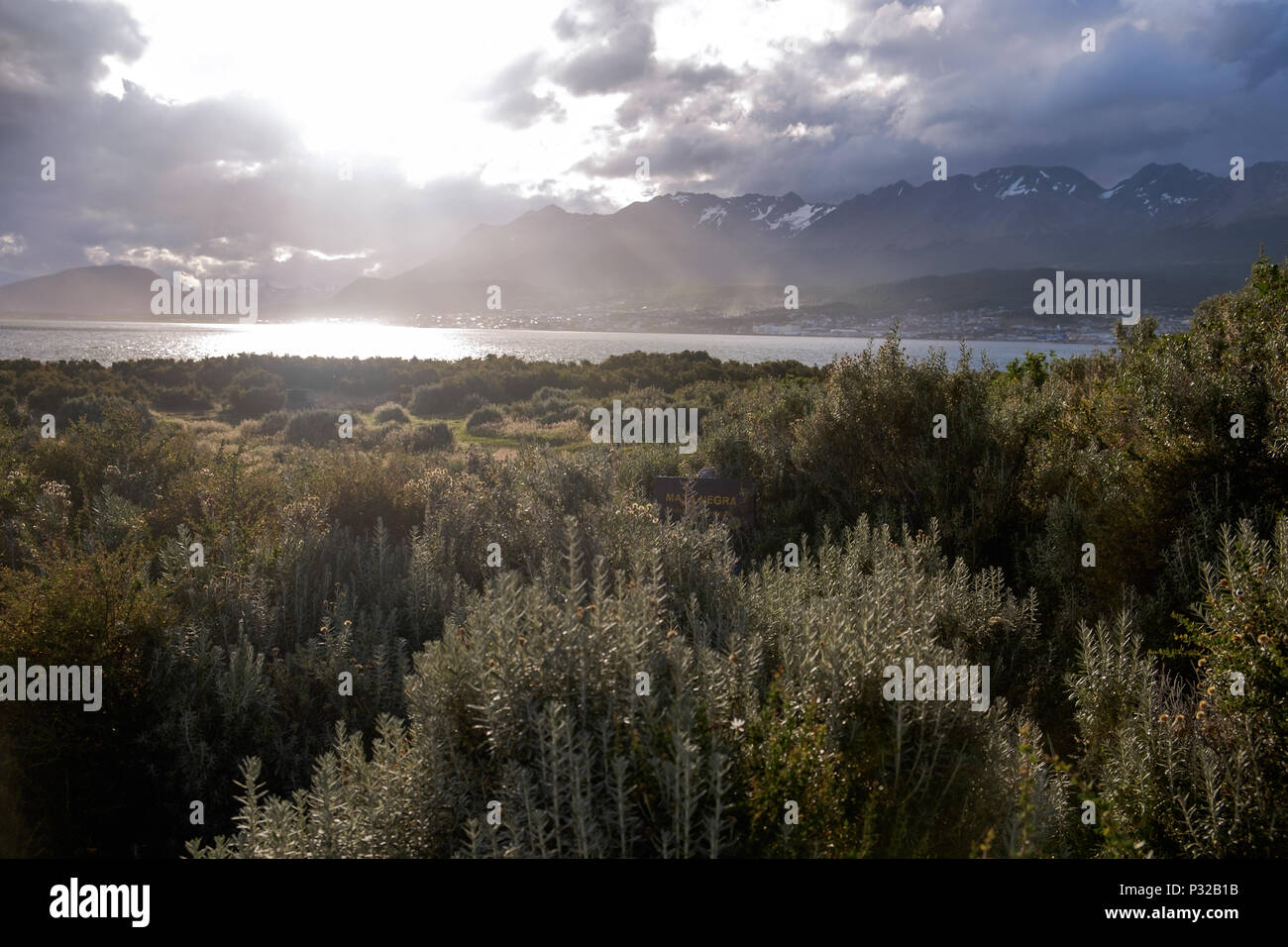 The sun enlightens Ushuaia in the distance and the plants at Playa Larga in the foreground. Ushuaia lies in a strongly cloudy region. Stock Photo