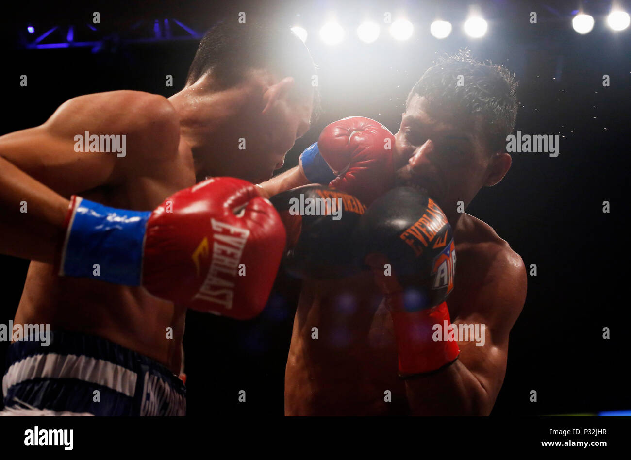 Flyweight Title Stock Photos & Flyweight Title Stock Images