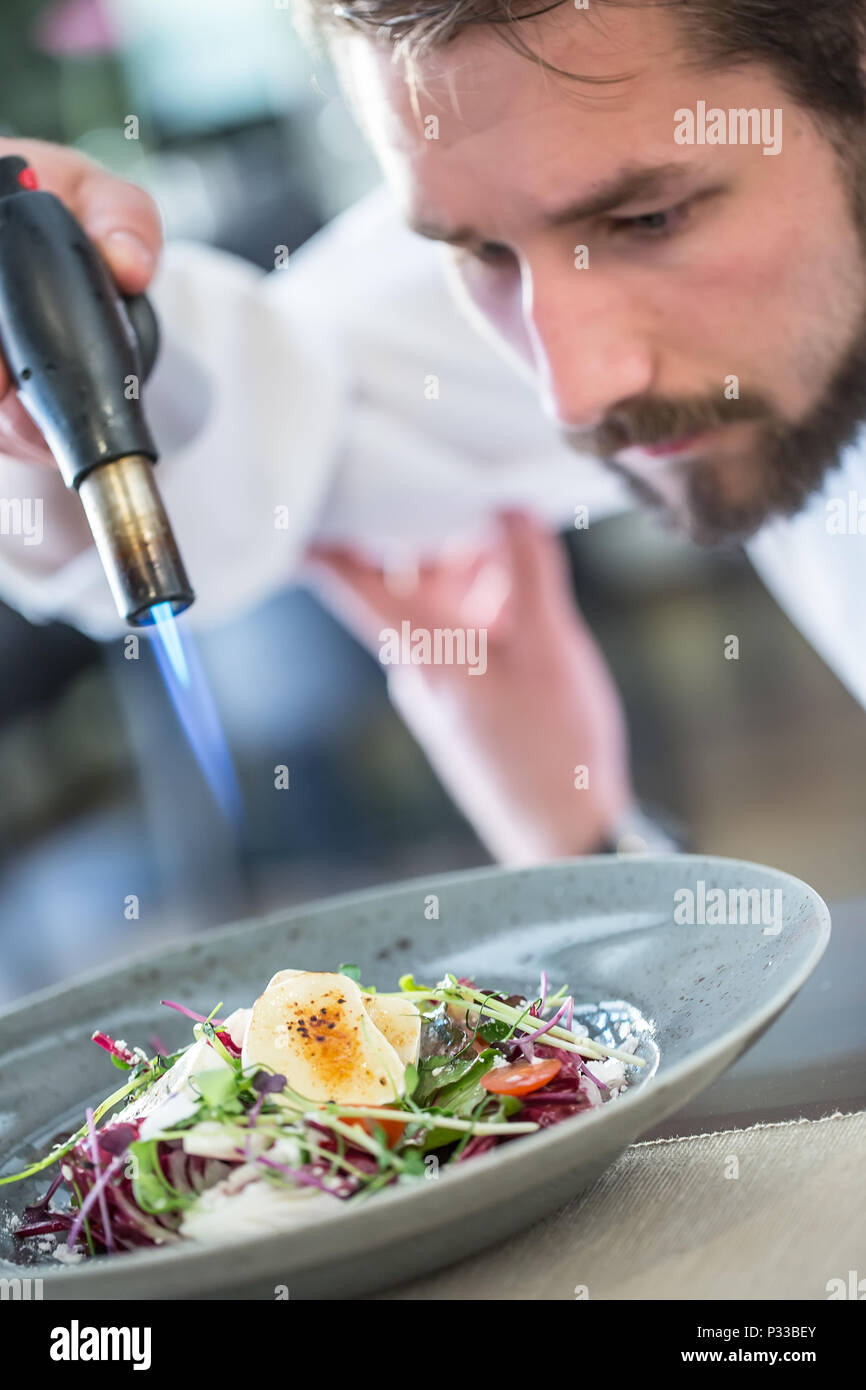 Chef in hotel or restaurant kitchen grills goat cheese on ...