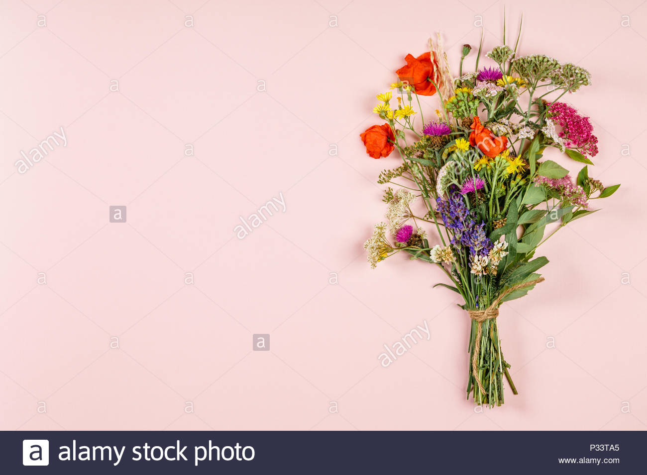Wild Flower Bouquet On Pastel Color Background Stock Photo