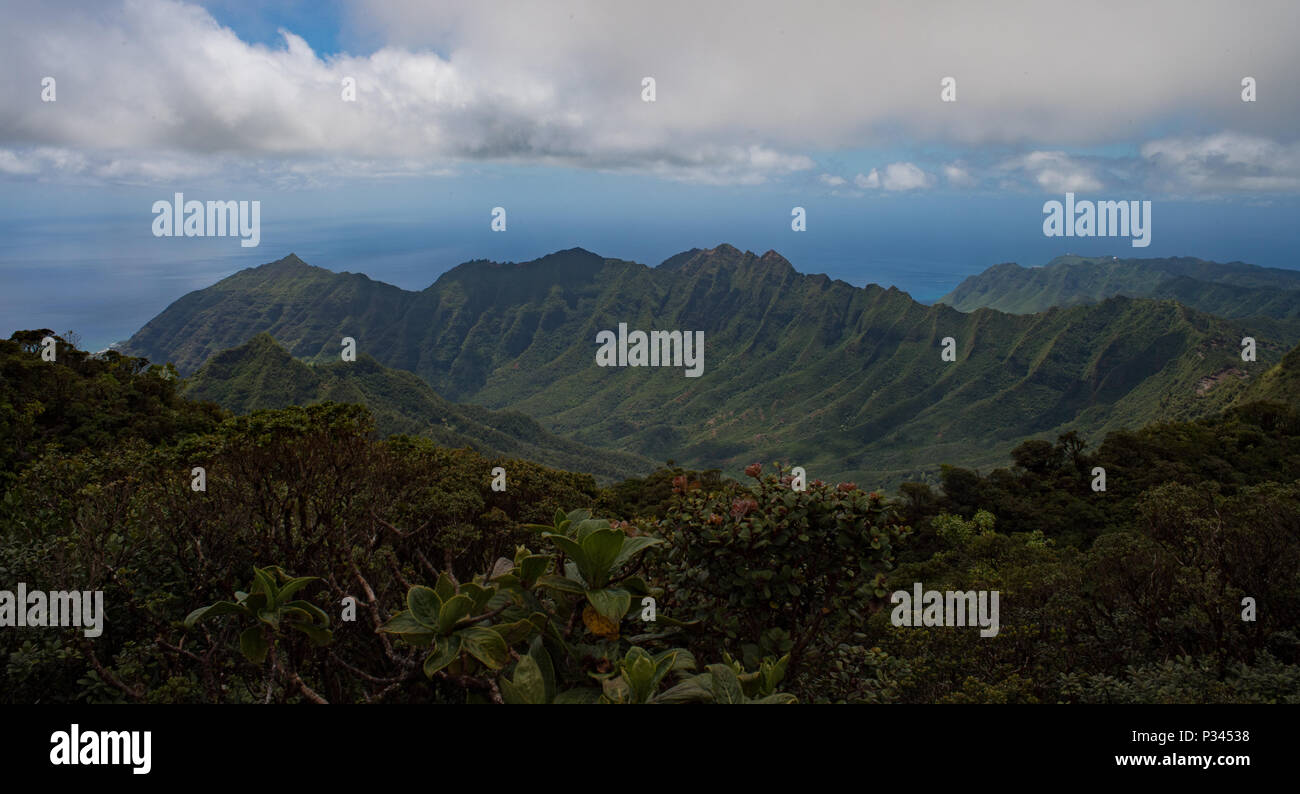 Pictured is the view from Ka'ala Air Force Station (AFS), which sits atop the highest point on the island of Oahu, Hawaii, Aug. 16, 2016. Restricted from the public, Ka'ala AFS's panoramic views, when not fogged or clouded in, are said to be some of the most breathtaking on the Island. Conducting radar operations at the AFS are the Hawaii Air National Guard's 169th Air Defense Squadron and the Federal Aviation Administration. (U.S. Air Force photo by Tech. Sgt. Brandon Shapiro) Stock Photo