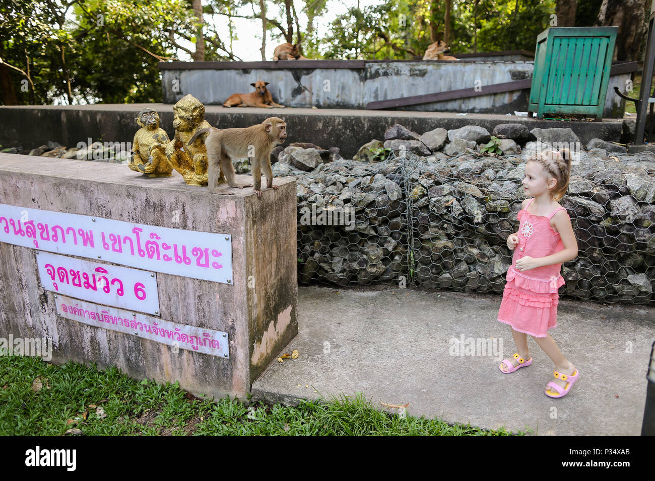 Little girl standing near monkey golden statuettes and macaco at zoo in Thailand. - Stock Image