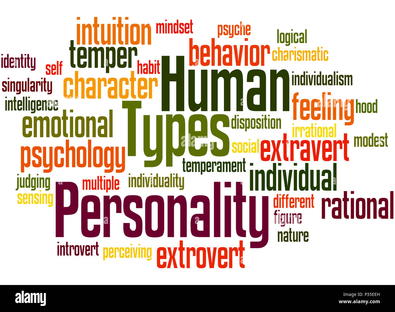 What are the characters? Types of human character 12