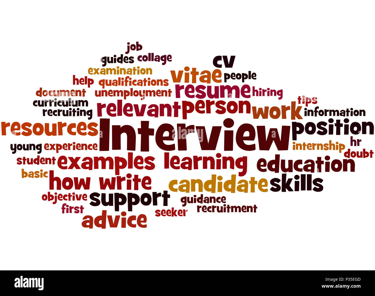 interview curriculum vitae word cloud concept on white background
