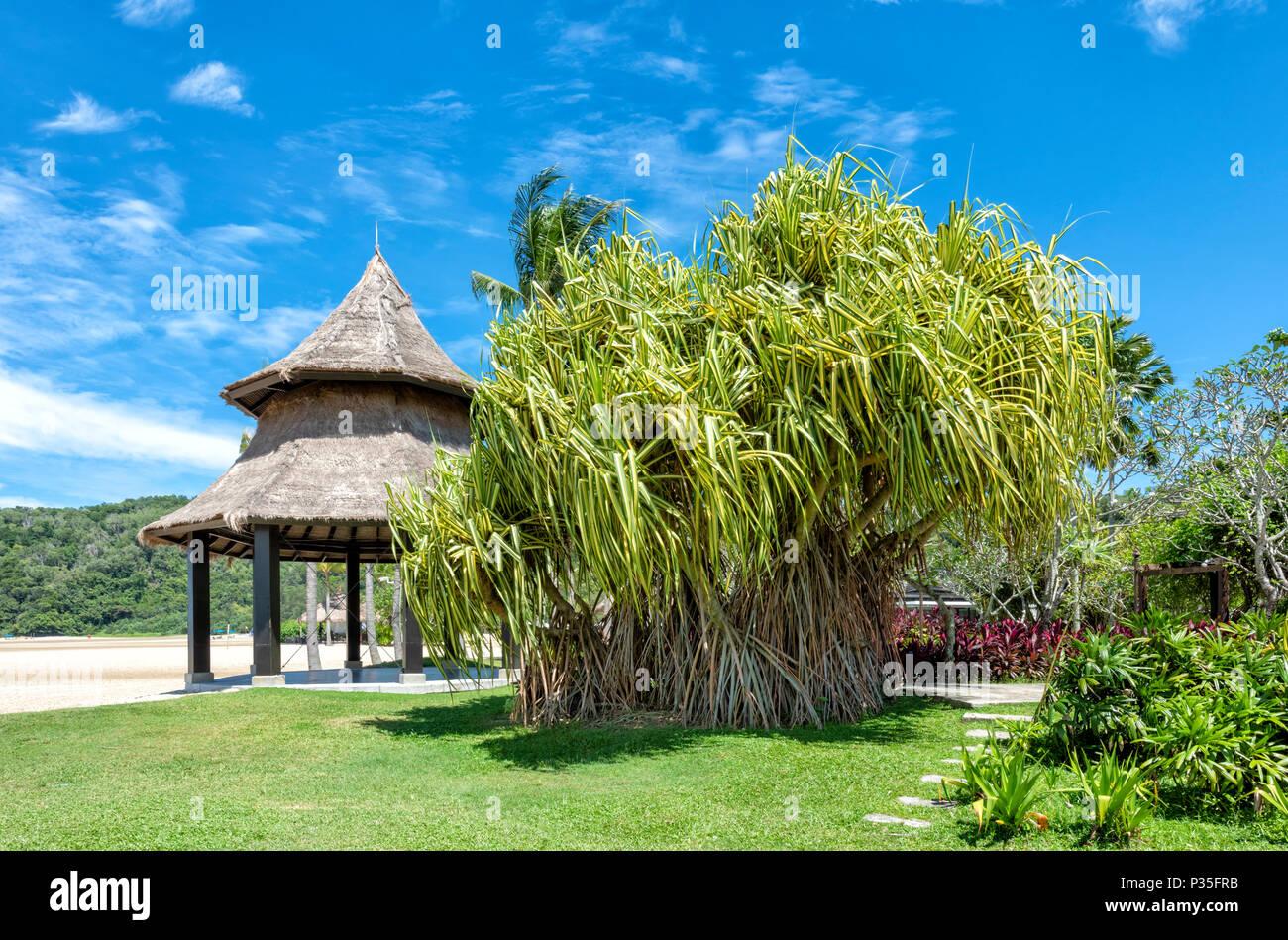 Beach front gazebo at the Shangri La Rasa Ria Hotel and Resort in Kota Kinabalu, Borneo, Malaysia - Stock Image