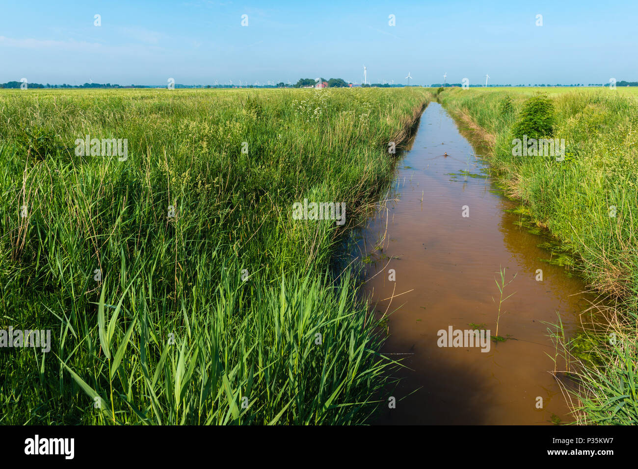 Landscape of agricultural East Frisia, Lower Saxony, Germany Stock Photo