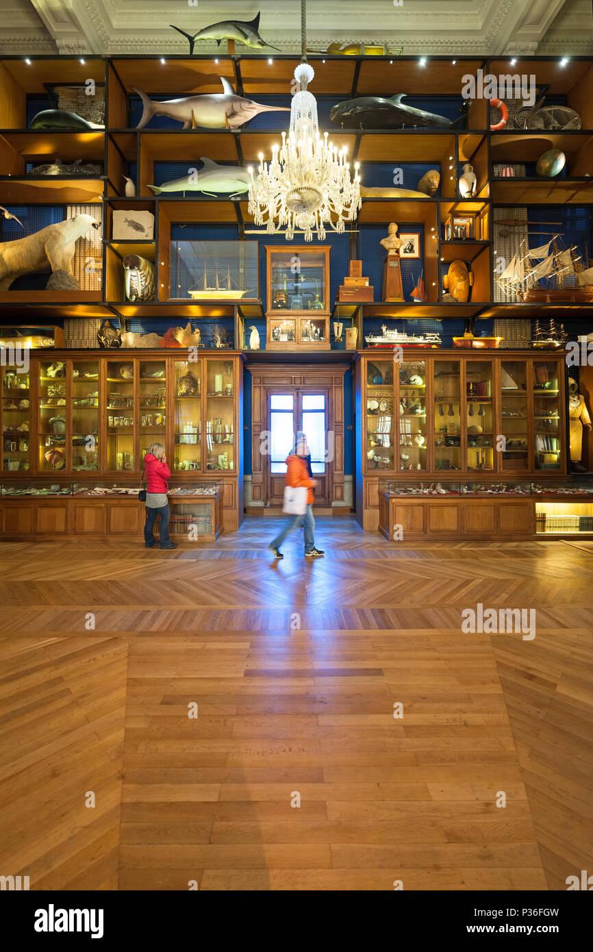 Monaco, cabinet of curiosities in Oceanographic Museum (Musee oceanographique) interior - Stock Image