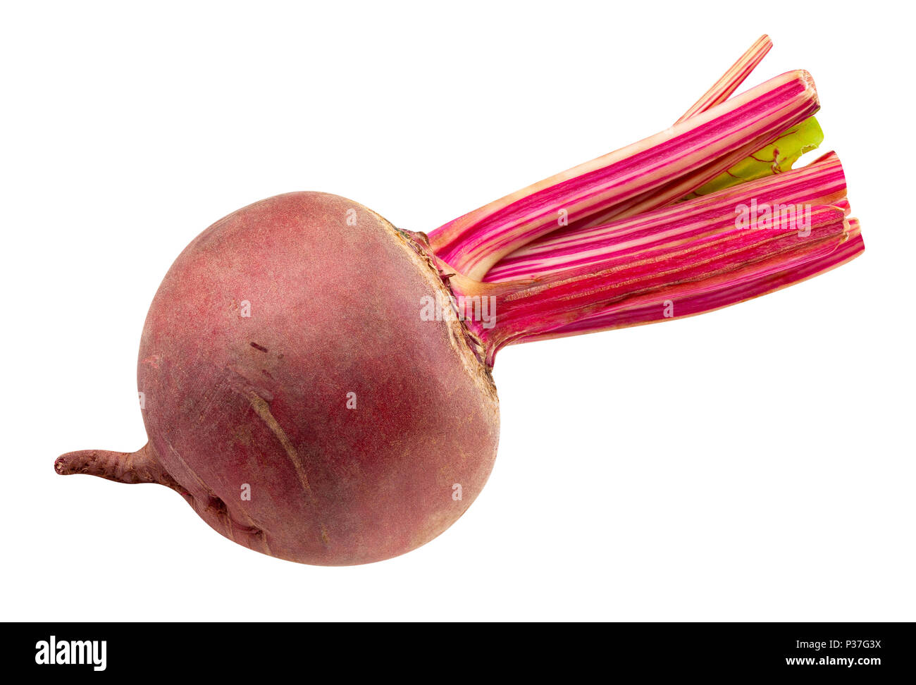 beetroot path isolated - Stock Image