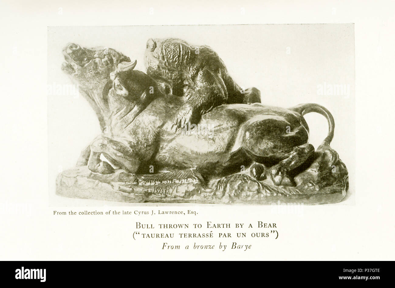 """Antoine Louis Barye  (1795-1875) was a Romantic French sculptor. He is best known as a sculptor of animals (therefore, an animalier). This sculpture by Barye is titled """"Bull thrown to earth by a bear"""" ('Taureau terasse par un ous') and belonged to the collection of the late Cyrus J. Lawrence, Esq. - Stock Image"""