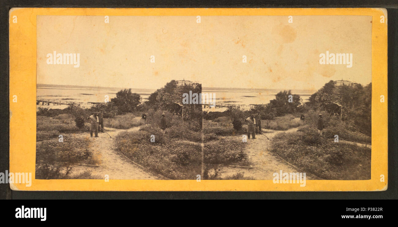 117 Garden & river view at Longwood, St. Helene Island, S.C, from ...