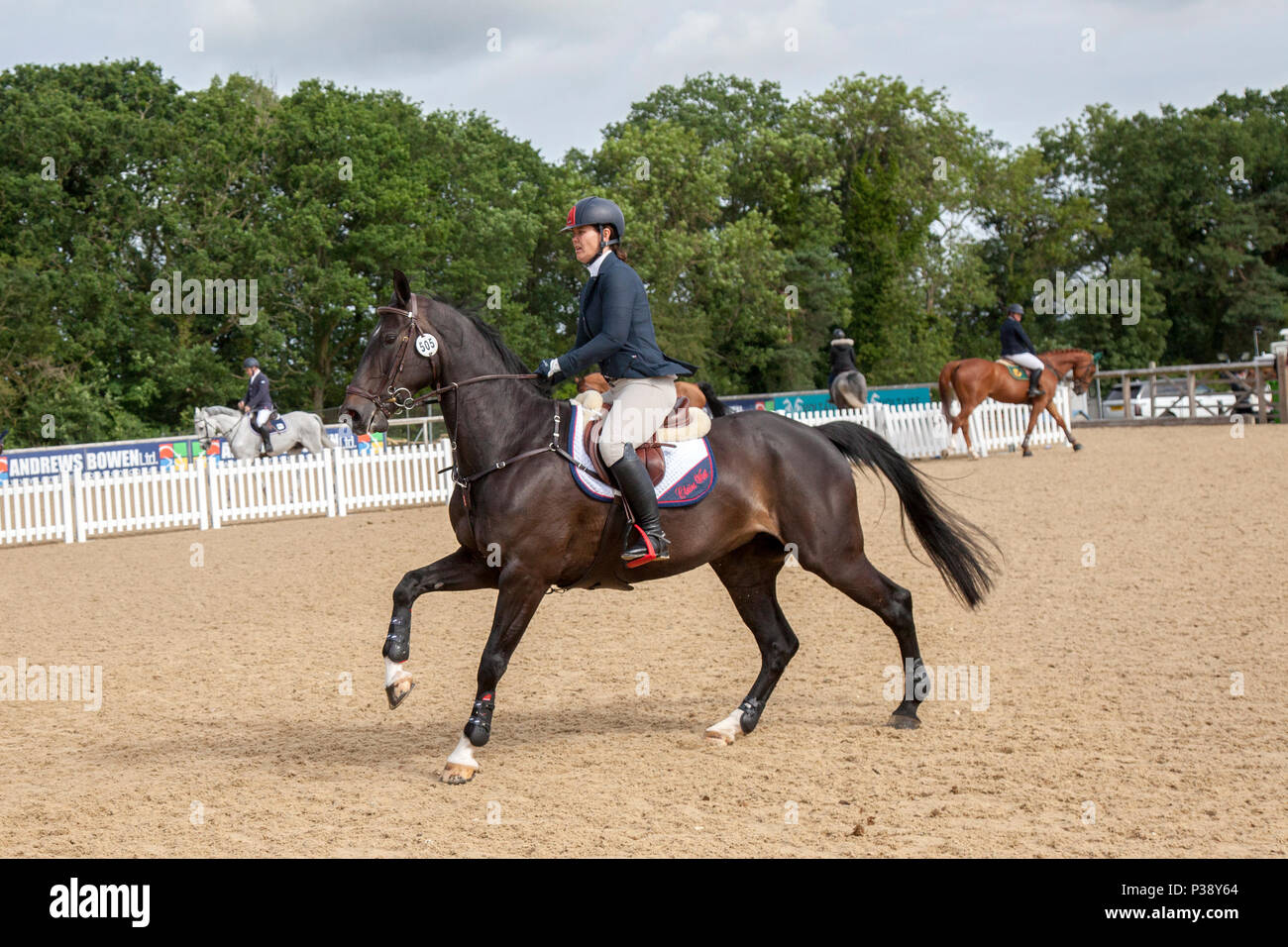 Bolesworth, Cheshire, UK. 16th Jun, 2018.  505 Clare West Show jumper riding  Courageux (Competition S21-CSIAm-A)  at the Equerry Bolesworth International Horse Show. Credit MediaWorldImages/AlamyLiveNews - Stock Image