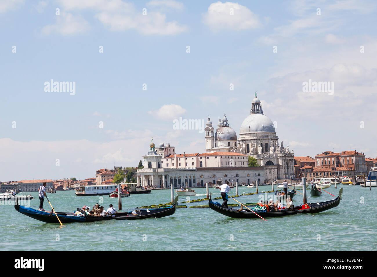 Gondolas  with Asian tourists in front of Punta della Dogana and Basilica di Santa Maria della Salute, Grand Canal, Venice,  Veneto, Italy. Busy biat  Stock Photo