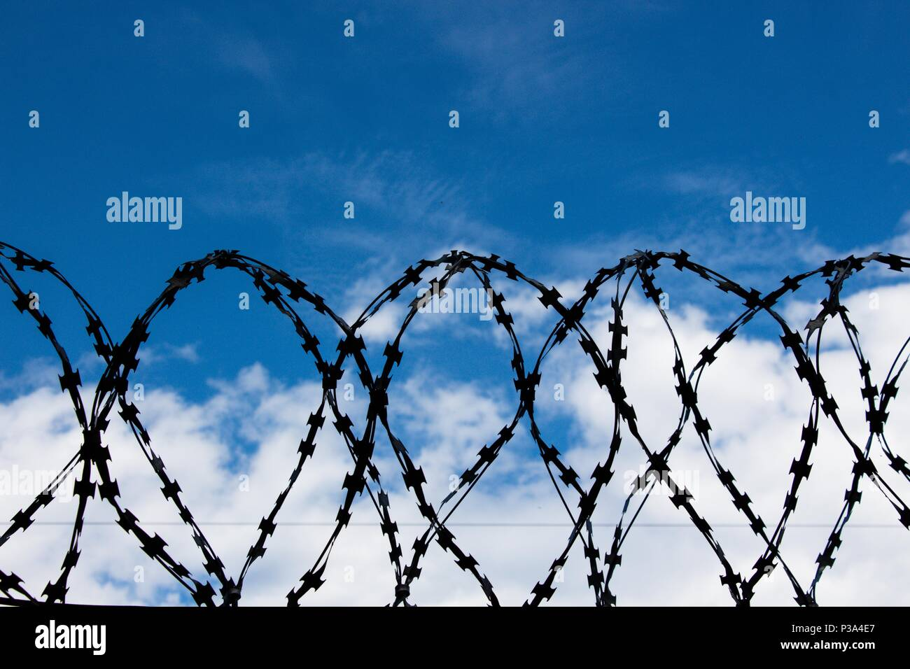 Barbed wire against the blue sky. It symbolizes prohibition or responsibility for non-fulfillment of requirements, as well as proximity to something a - Stock Image