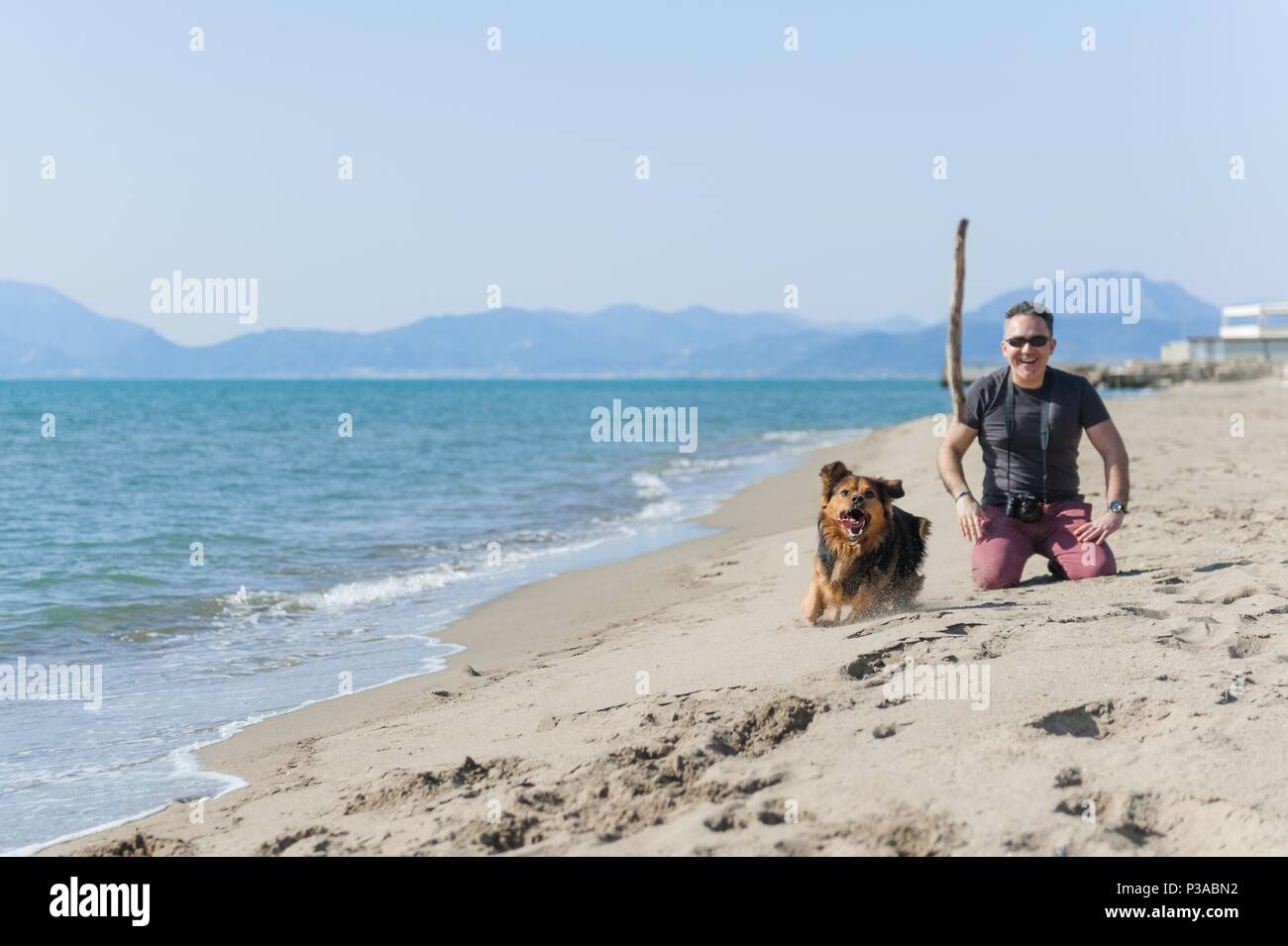 Young caucasian man playing with dog on beach. Man and dog having fun on seaside - Stock Image