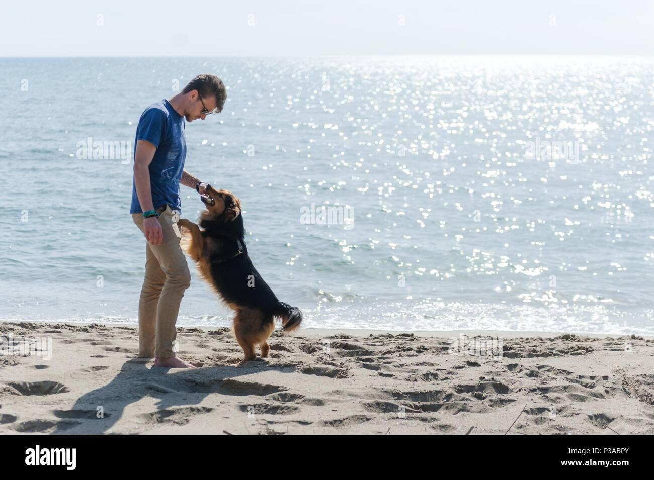 Young caucasian boy playing with dog on beach. Man and dog having fun on seaside - Stock Image
