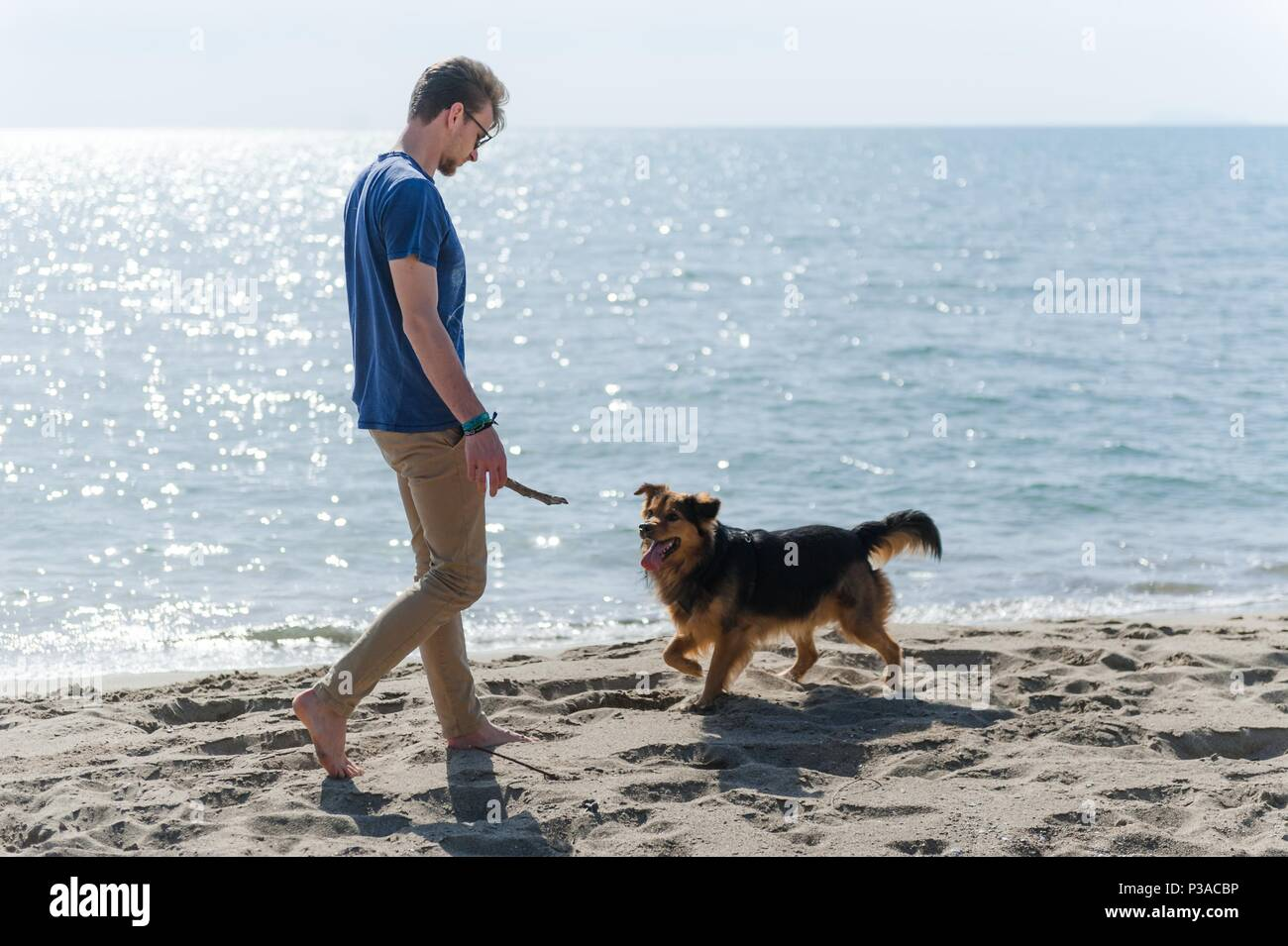 Young caucasian male playing with dog on beach. Man and dog having fun on seaside - Stock Image