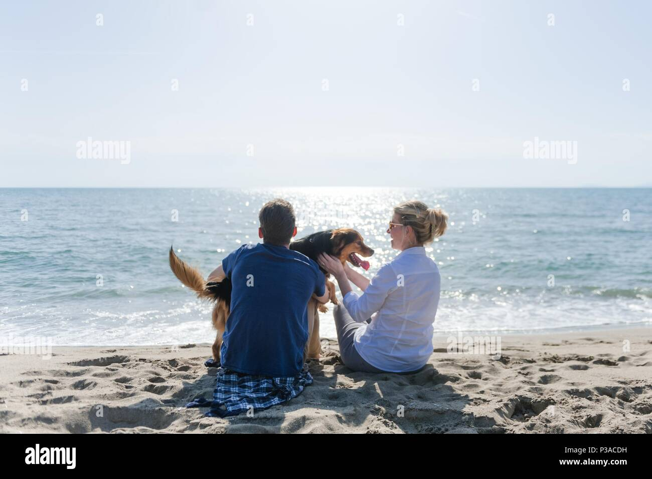 Mom with her son and their dog sitting on the beach watching the sunset - Stock Image