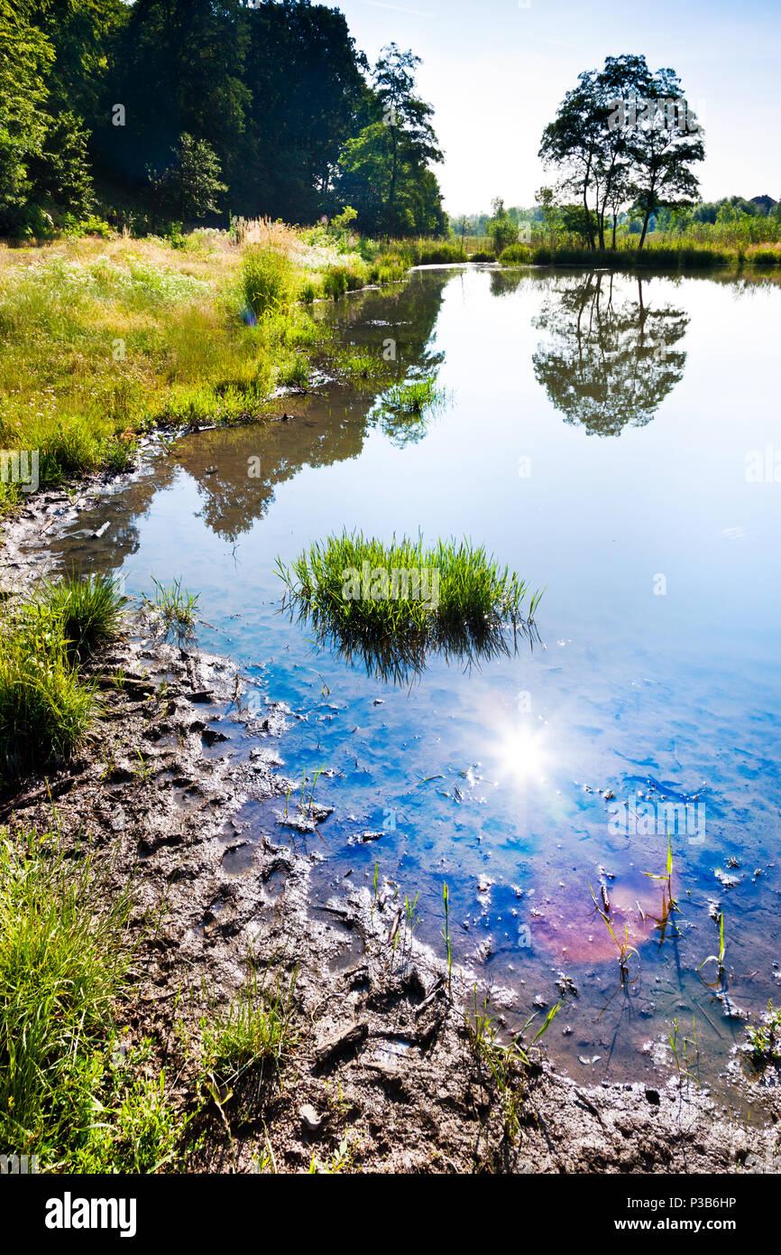 Suchý poldr Čihadla - Prirodni rezervace V piskovne, Přírodní park Klánovice - Čihadla, Dolni Pocernice, Praha, Ceska republika - Stock Image