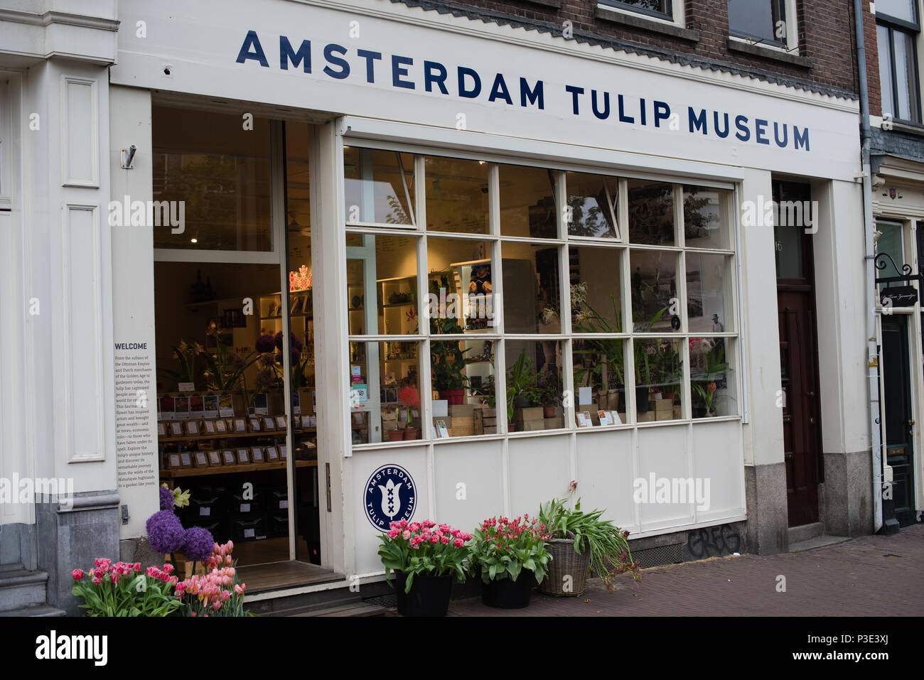 Amsterdam tulip museum in the canal district - Stock Image