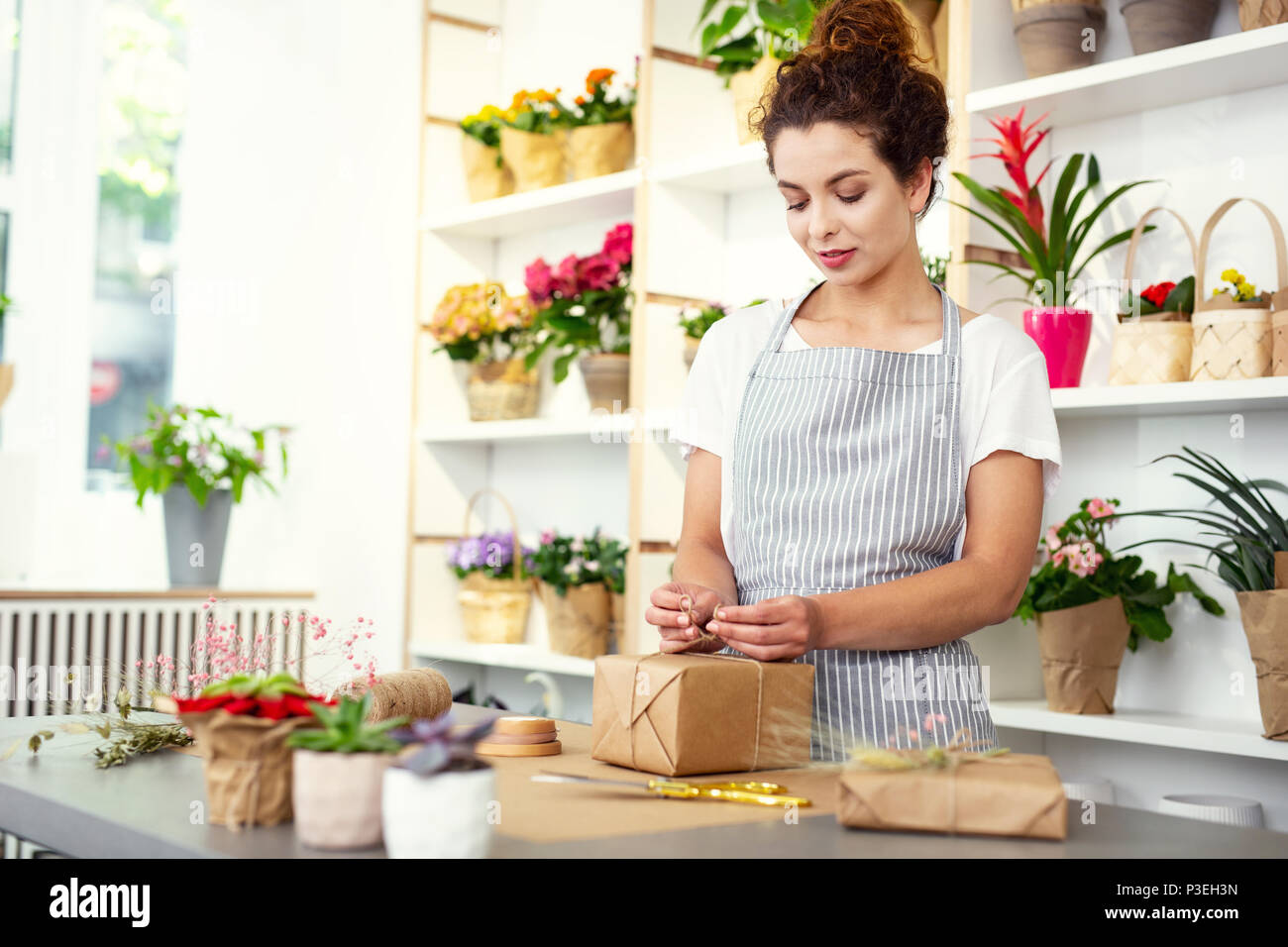 Nice young woman preparing a gift Stock Photo