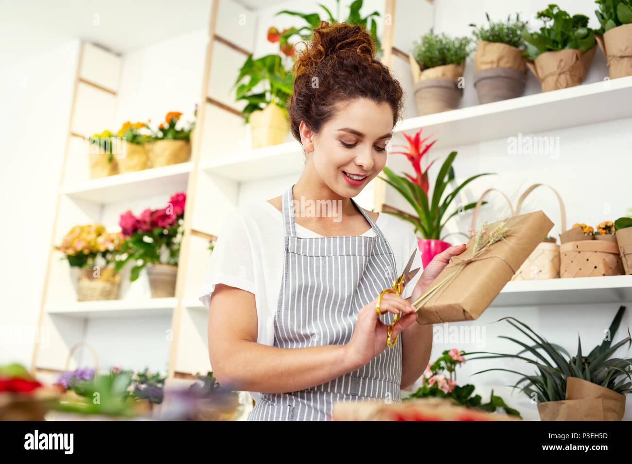 Pleasant nice woman finishing the wrapping - Stock Image
