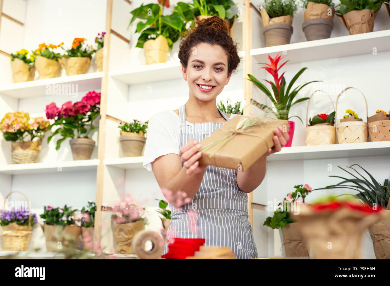 Cheerful happy woman working as a designer - Stock Image