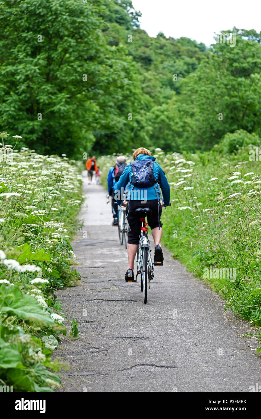 A woman walker and cyclists on a path which is on the bed of an old railway, Manifold Valley Staffordshire England UK - Stock Image