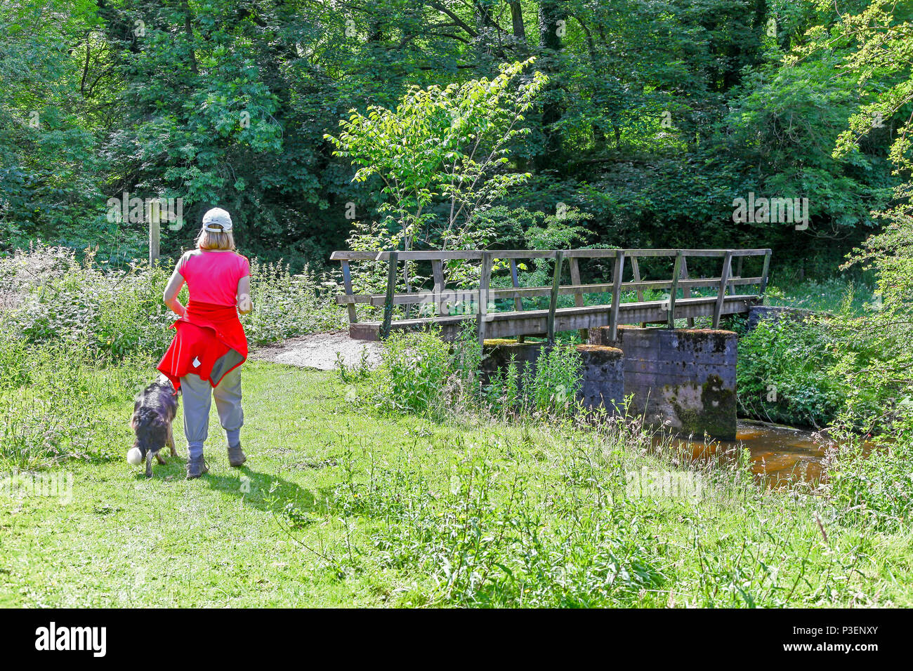 A woman and her dog walking, about to cross a wooden bridge over the River Manifold, Manifold Valley Staffordshire England UK - Stock Image
