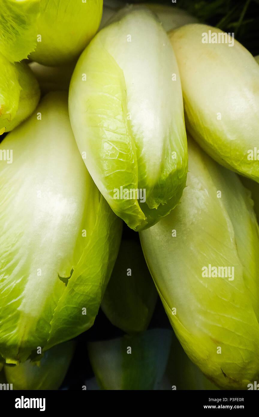 Belgian endives for sale at the Farmer's Market Stock Photo