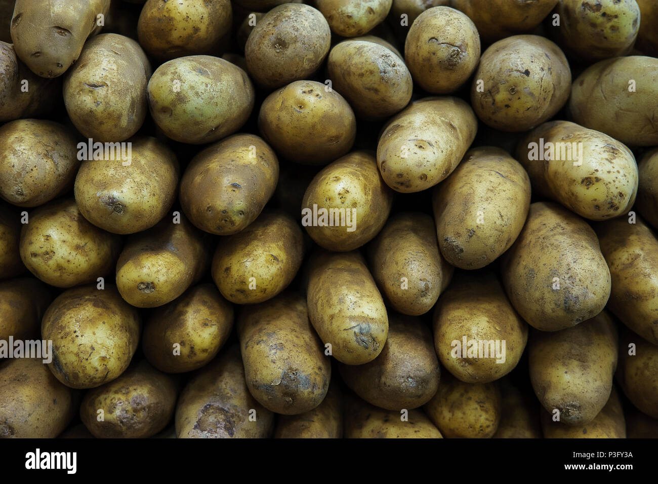 Food background - Russet potatoes pile at the farmers market - Stock Image