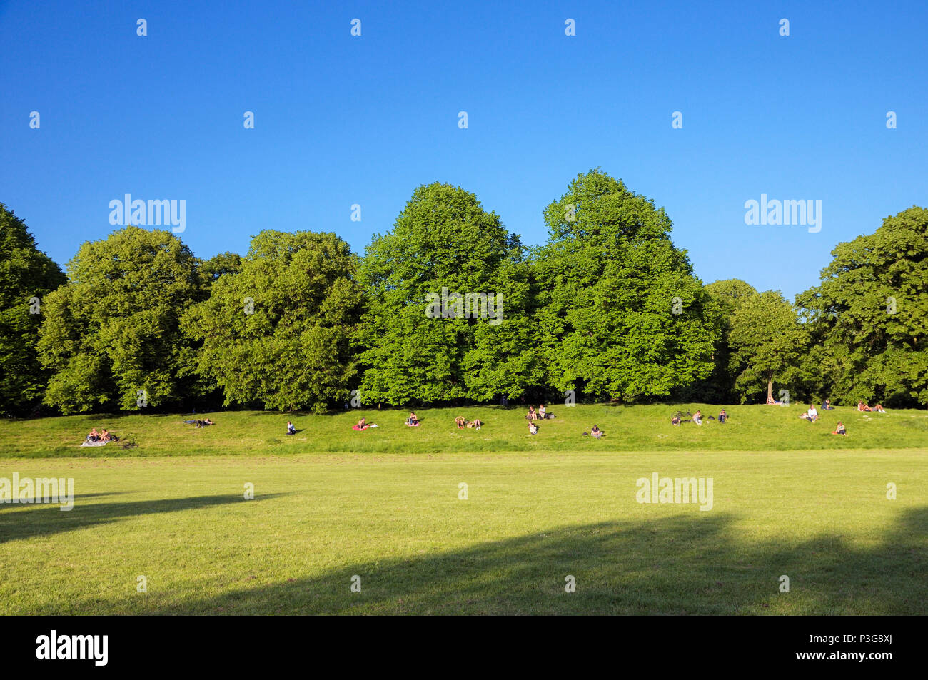 People relaxing in the sun on the grassy banks of Kensington Gardens, Royal Borough of Kensington and Chelsea, London, England, UK - Stock Image