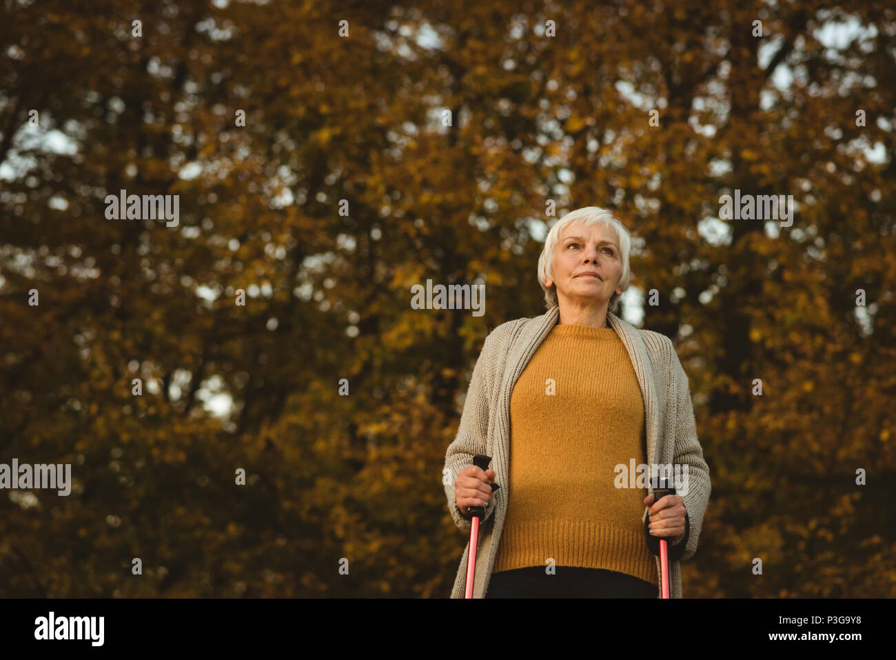 Senior woman walking on a dusty road with walking sticks - Stock Image