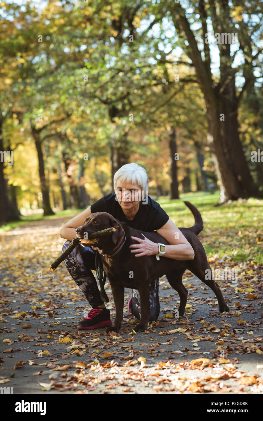 Senior woman stroking her pet dog in the park - Stock Image