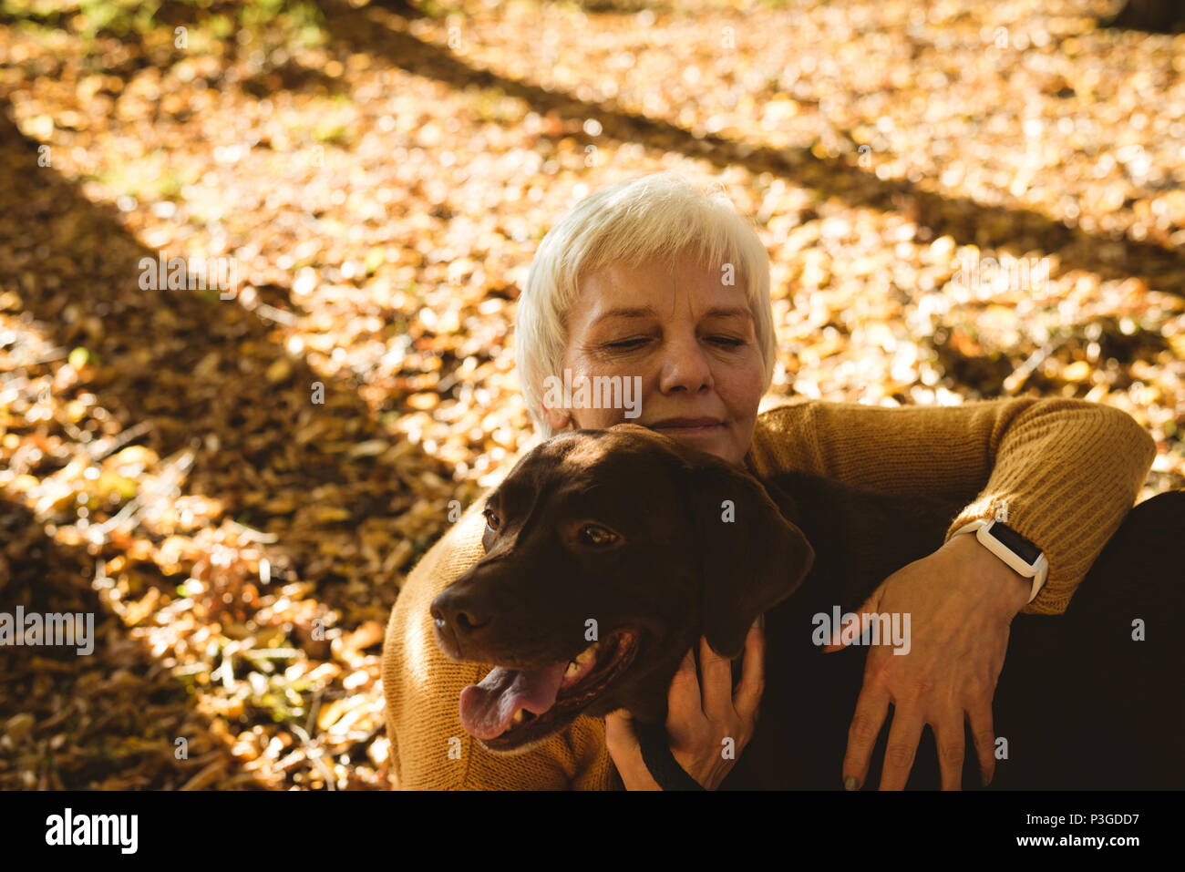 Senior woman sitting on ground and stroking her pet dog in the park - Stock Image
