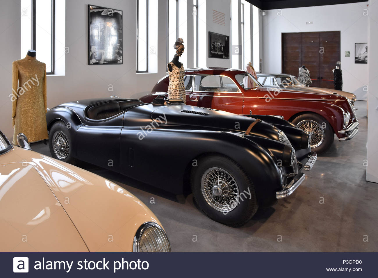 Jaguar classic vintage cars displayed at Museum Of Automobiles (Museo Automovilístico) in Malaga Spain Europe. - Stock Image