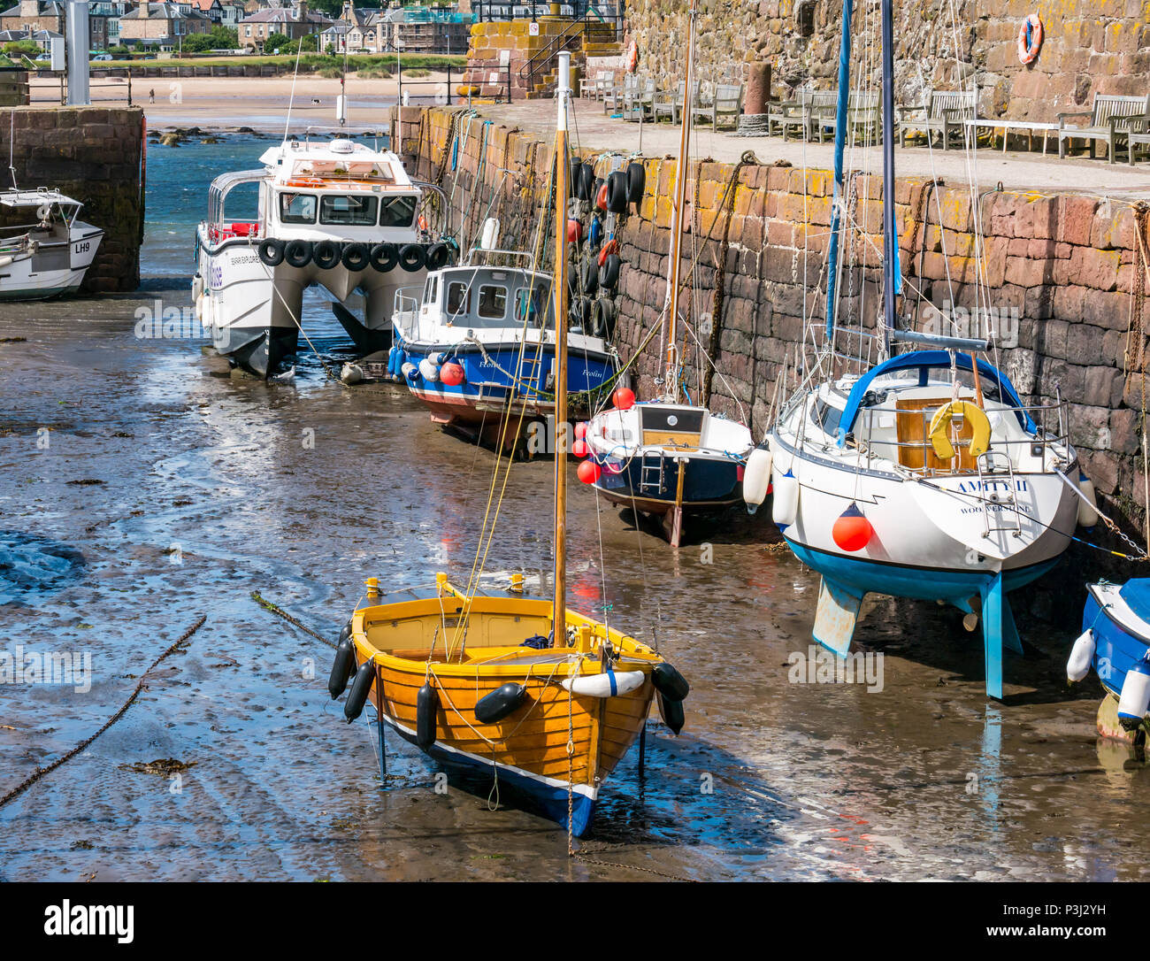 Wooden sailing boat and other boats in mud at low tide, with Seafari Explorer catamaran, North Berwick harbour, East Lothian, Scotland, UK Stock Photo