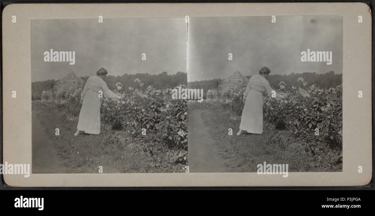 2 4 1917 Stock Photos & 2 4 1917 Stock Images - Alamy