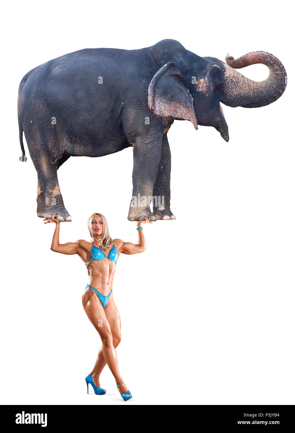 Abstract concept photo of mighty woman holding elephant on her hands isolated over white background - Stock Image
