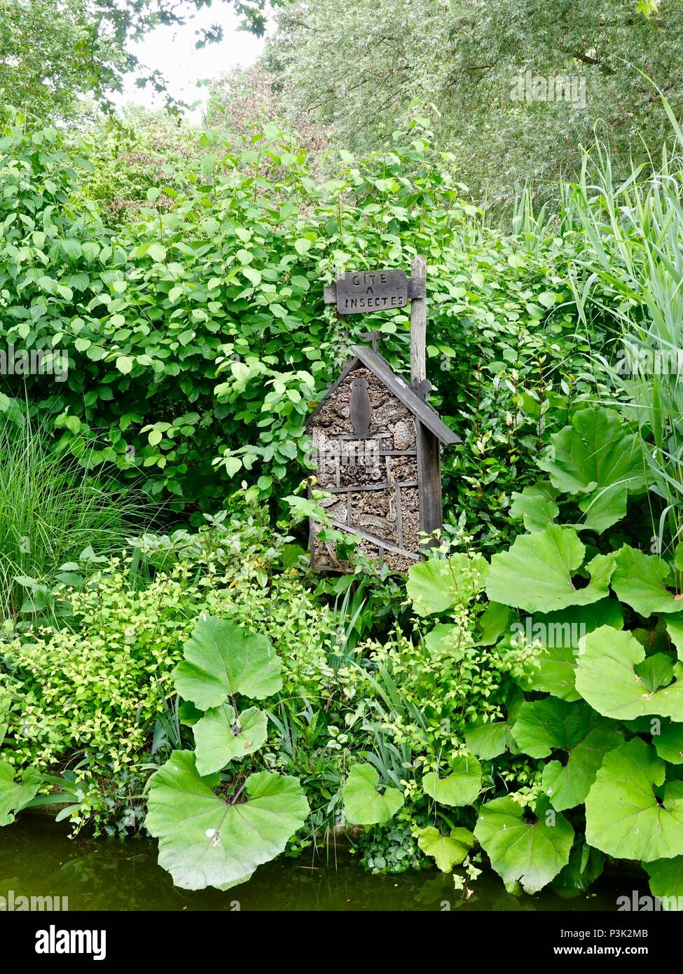 Insect house surrounded by lush foliage, Bercy Park, Paris, France - Stock Image