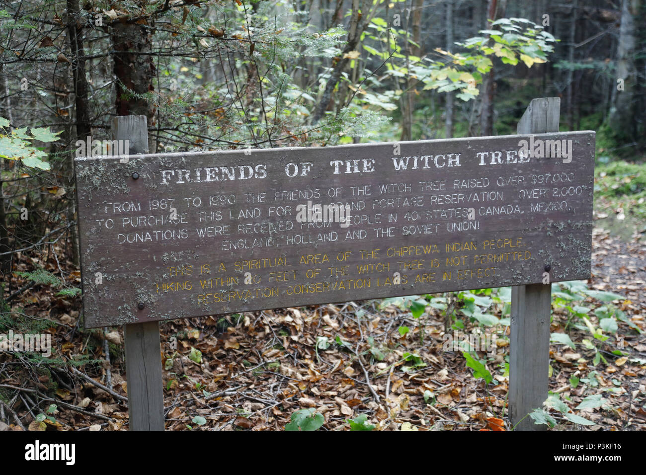 Friends of Witch Tree sign, Grand Portage, Minnesota, USA Stock Photo
