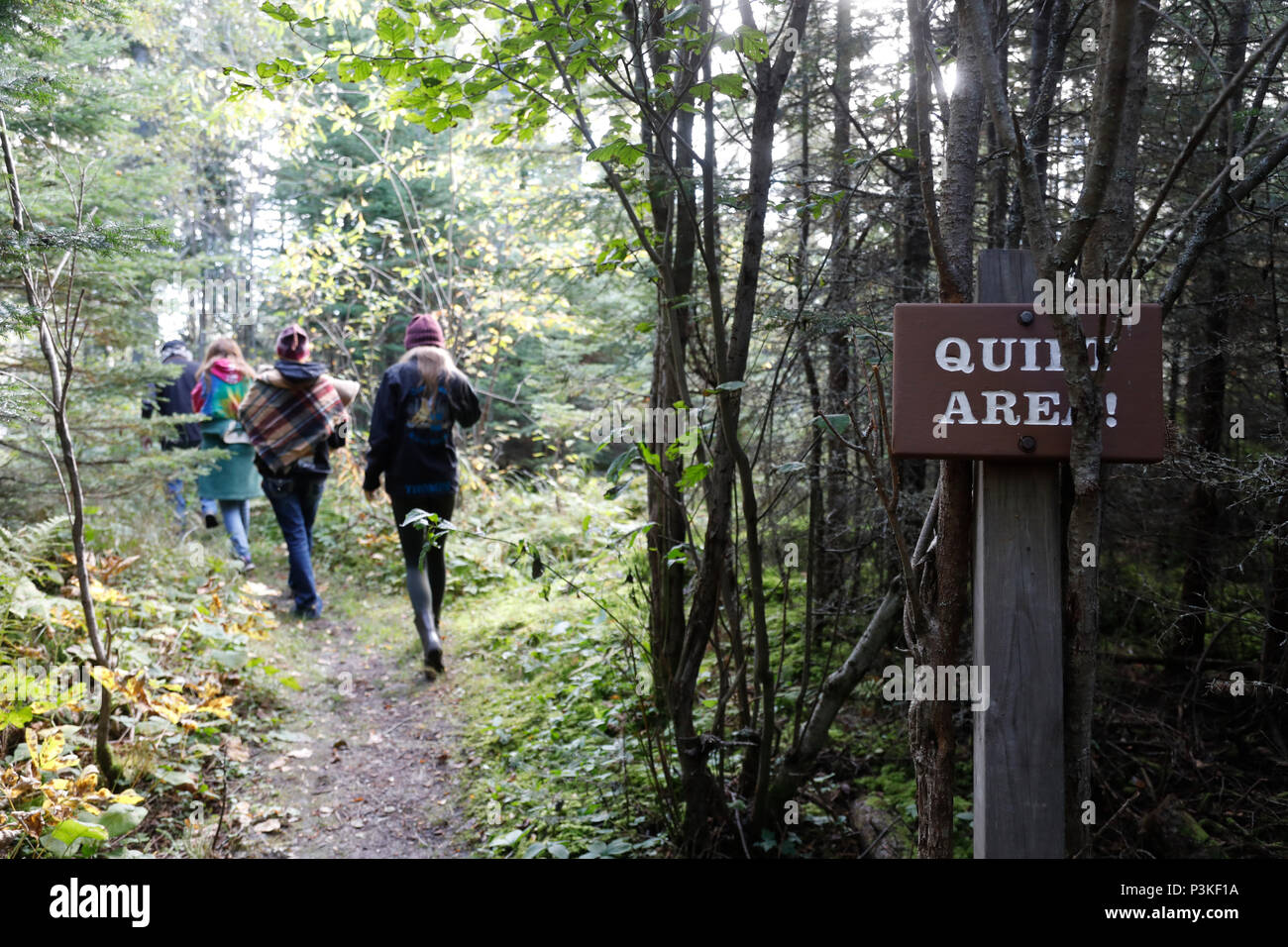 Visitors walk to Witch Tree, Grand Portage, Minnesota, USA Stock Photo