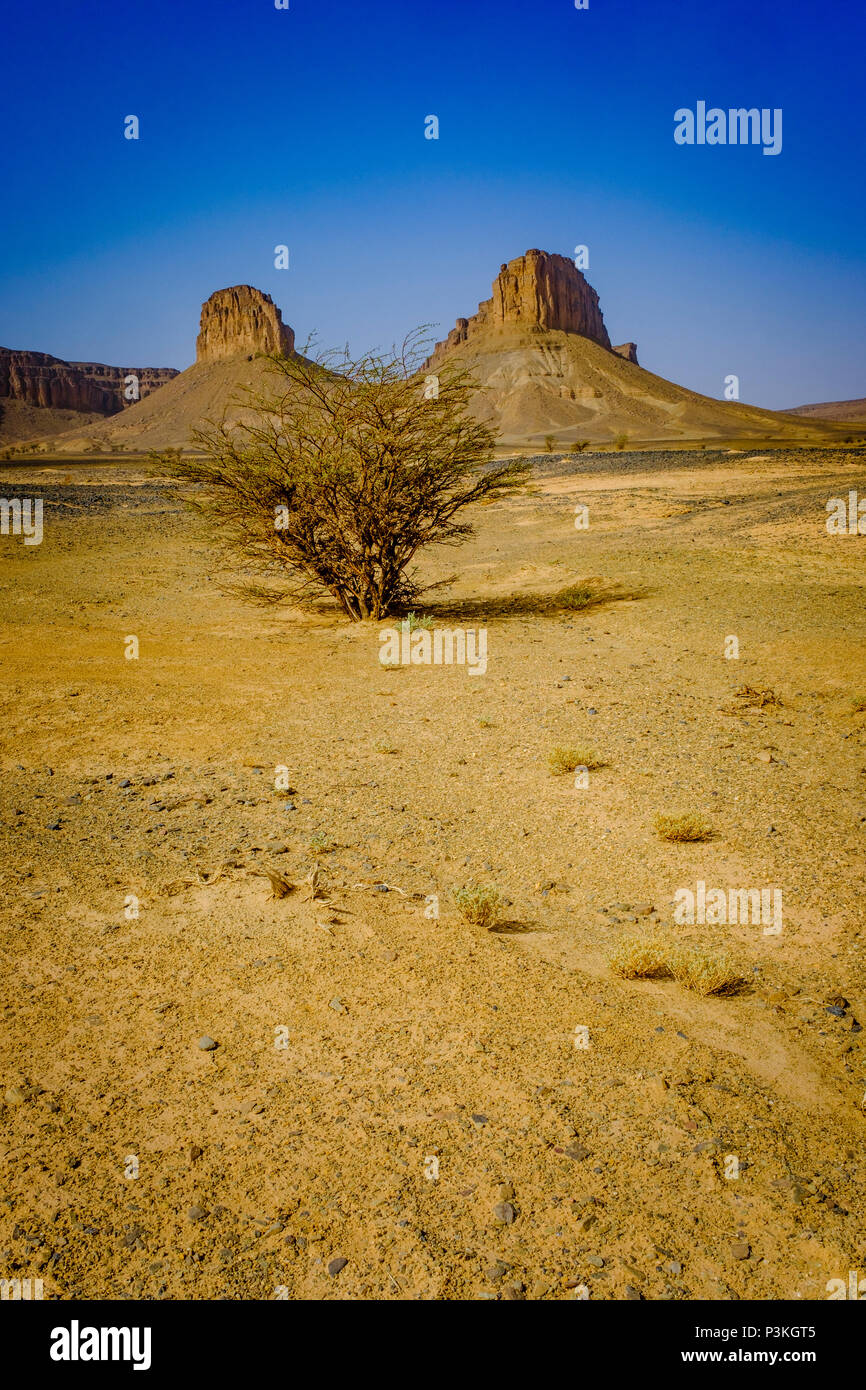 The Moroccan desert near Foum Zguid in the south of Morocco - Stock Image