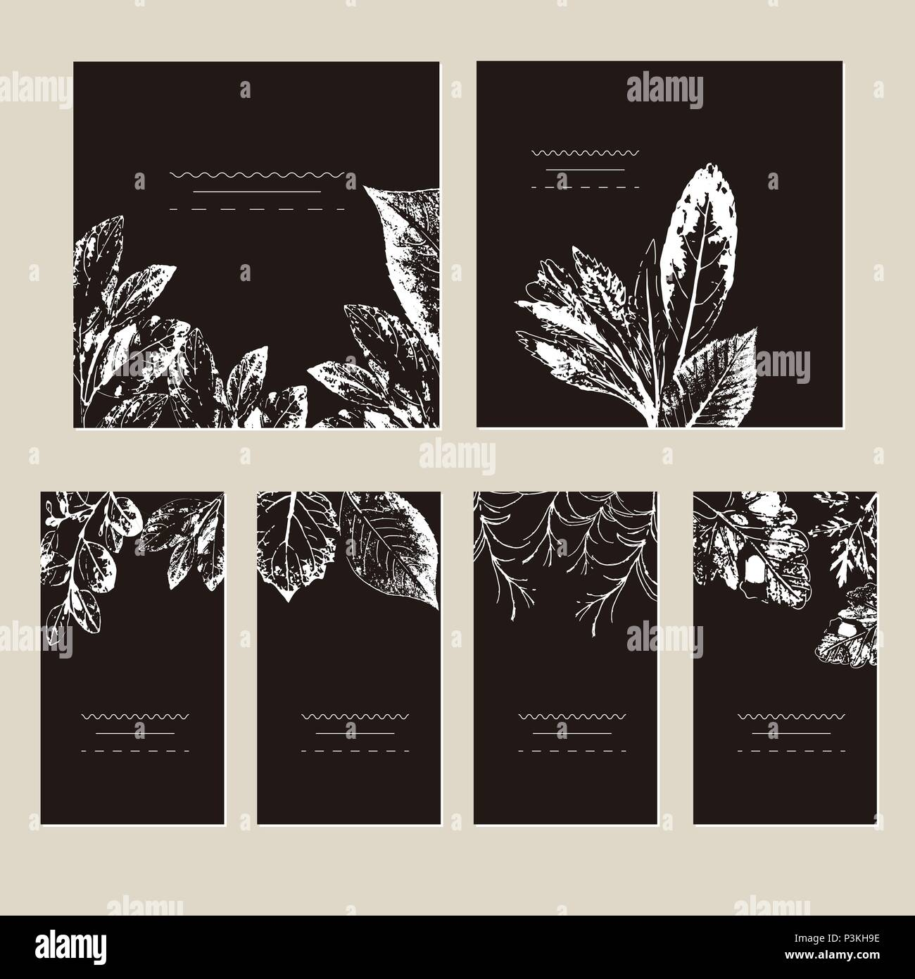 Set of card with leaves. Wedding ornament concept. Floral poster, invite. Vector decorative greeting card or invitation design background - Stock Image