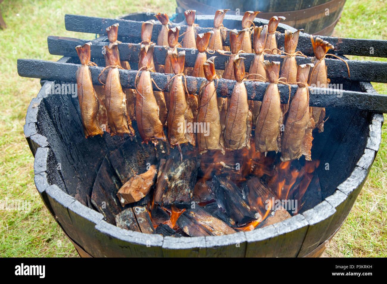 Arbroath Smokies being prepared - Stock Image