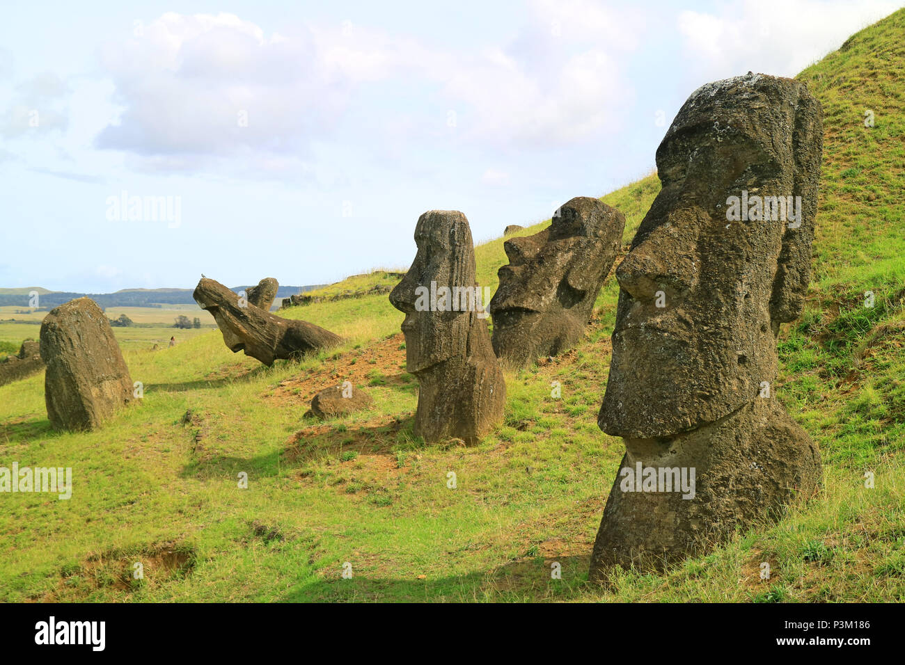 Many of Moai statues scattered on the slope of Rano Raraku volcano, Easter Island, Chile, UNESCO World Heritage, Archaeological Site - Stock Image
