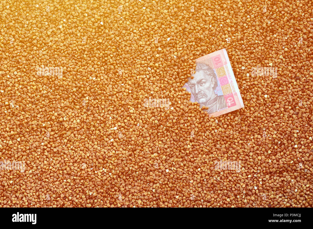 Background texture of a large pile of buckwheat, among which one can see a bill of one Ukrainian hryvnia. The concept of increasing prices for cereals - Stock Image