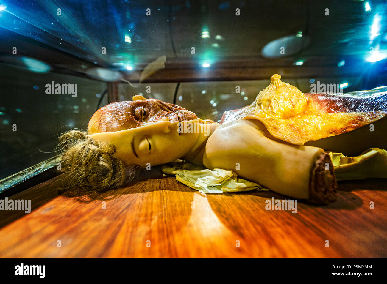 Italy Sardinia Cagliari Collection of Anatomical Waxes by Clemente Susini - Stock Image