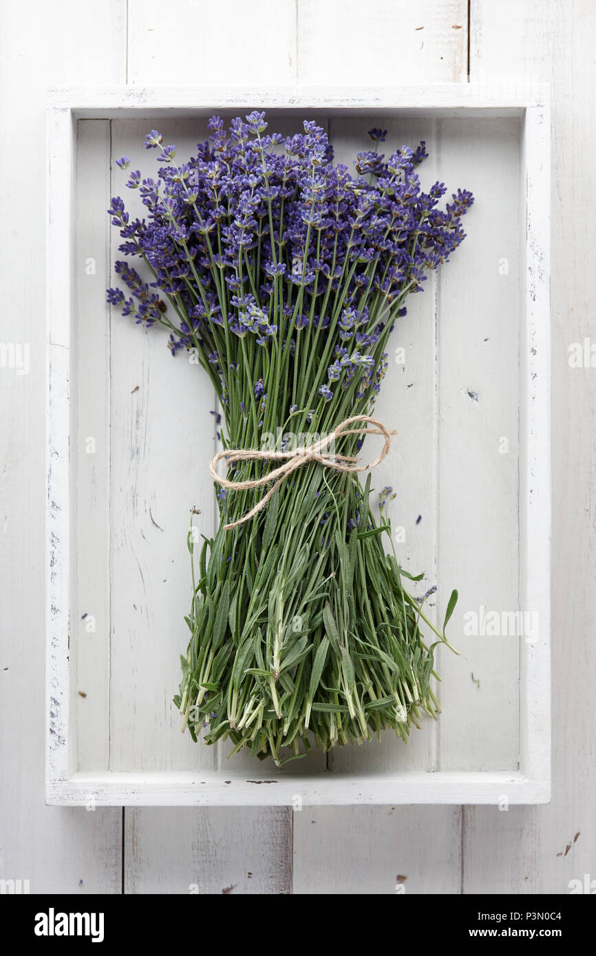 Lavender Flowers Bouquet On White Wooden Planks Stock Photo
