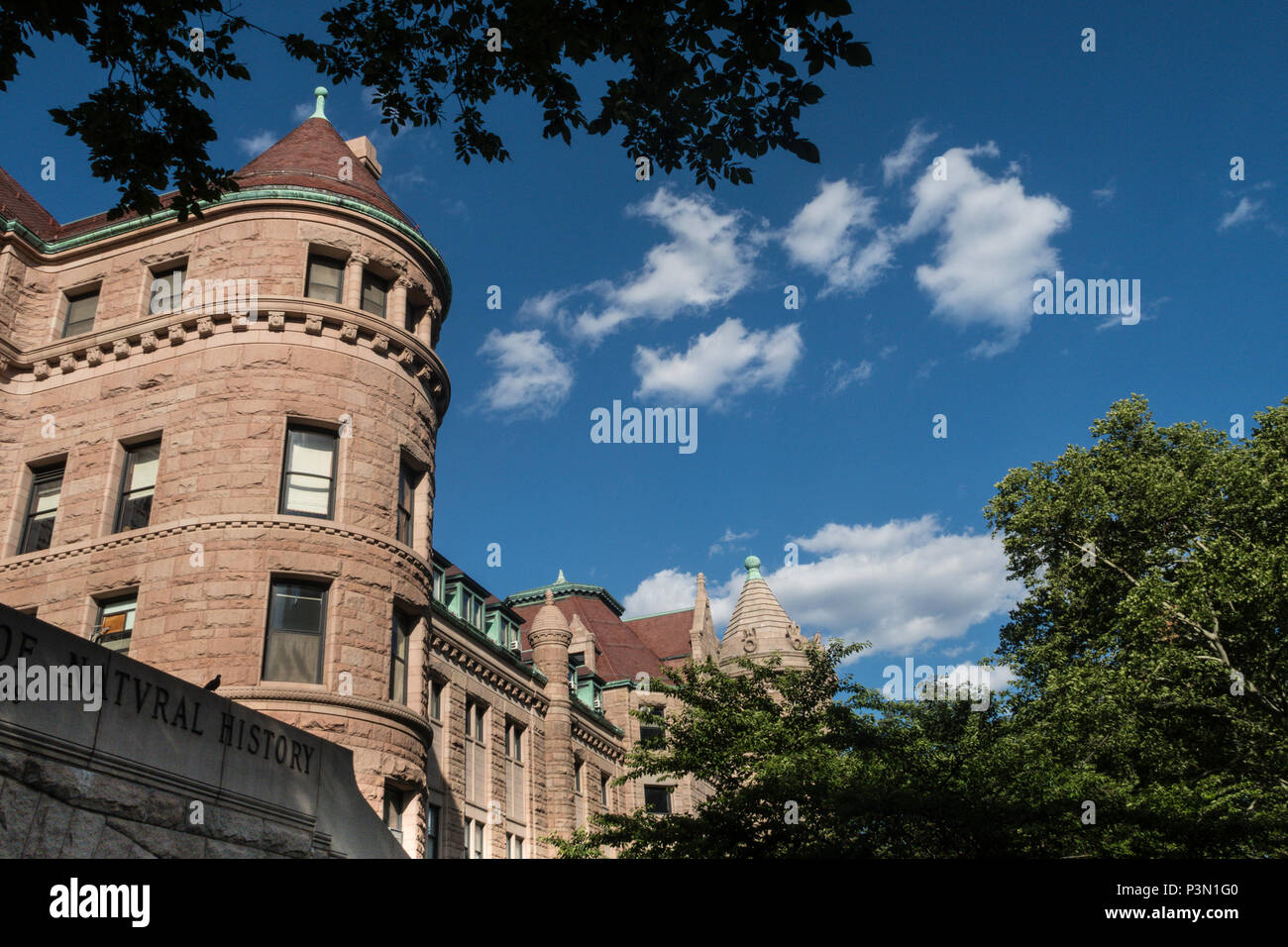 American Museum of Natural History, NYC, USA - Stock Image